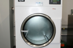 50lb Steam Dryer